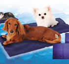 large gel ice pack for pet